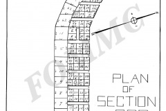 section-202